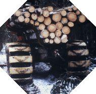 Holzrückezug